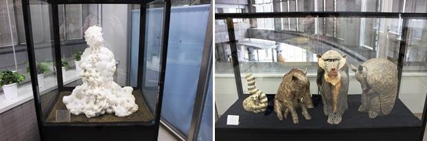 (左)夢と希望を抱いたサザエをモチーフにした「空に舞う」。(右)アルマジロなど、動物たちをモデルにした「話し」